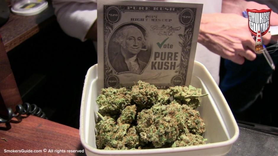 Resultado de imagen para american cannabis