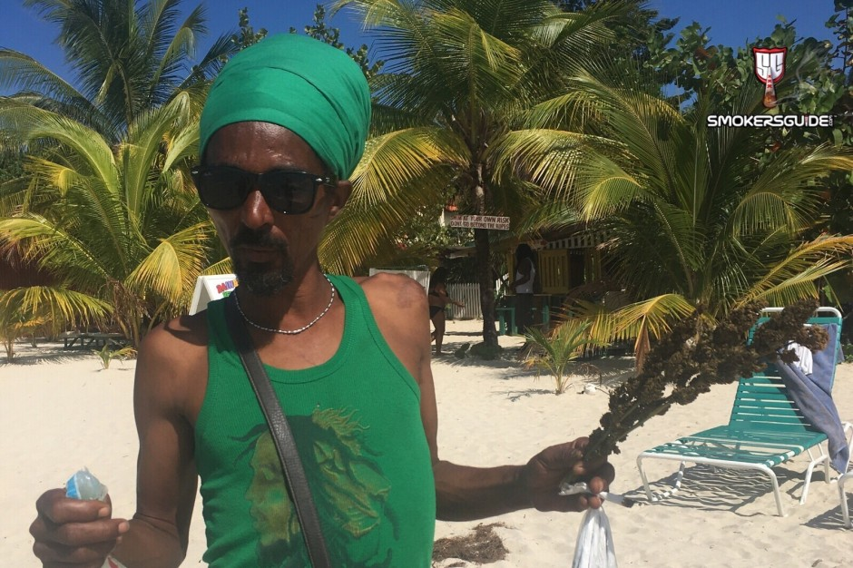 Purchasing Cannabis In Jamaica As A Tourist