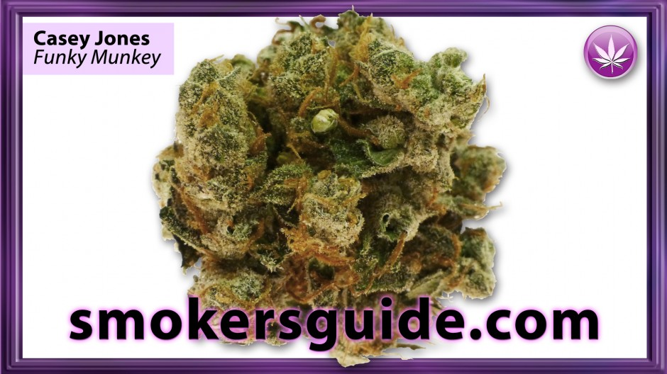 new england dispensaries steroid