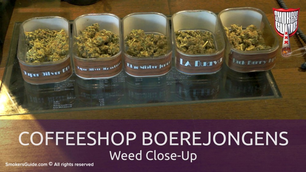 how to get a weed pass in amsterdam