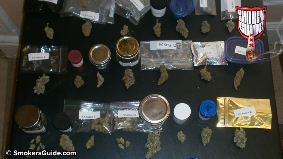 Denver Cannabis Cup Entries - Testing 30 US Sativas for 420