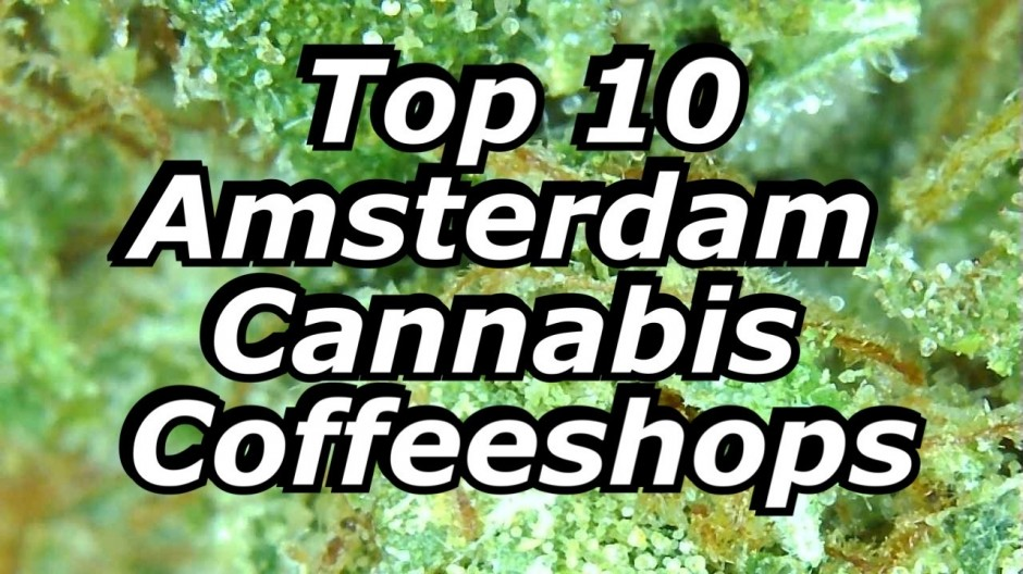 Top 10 Amsterdam Coffeeshops - video tours
