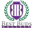 Best Buds Society Saskatoon Downtown