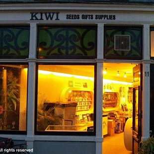 SG Kiwi Seeds Front Amsterdam