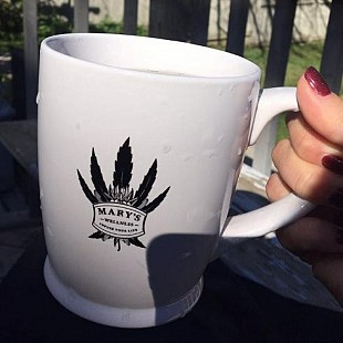 marys wellness mug[1]