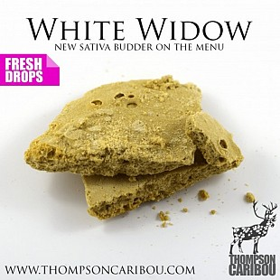White-Widow-Budder-min-500x500