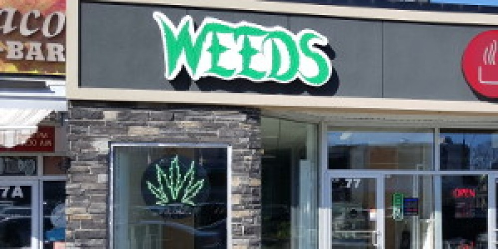 Weeds - Vanier Ottawa Glass & Gifts Dispensary