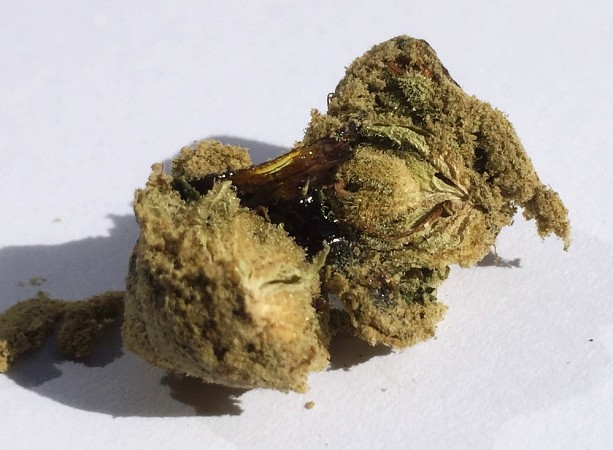 Moonrocks-Review-Coffeeshop-Rusl