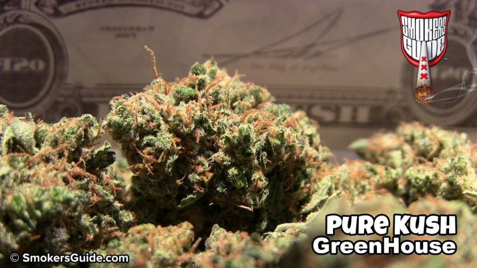 Cannabis Cup 2014 Winners List Amsterdam