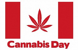 6th Annual Cannabis Day Peterborough 2015